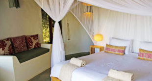 Chobe Bakwena Lodge ★★★★