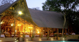 Chobe Safari und Bush Lodge ★★★